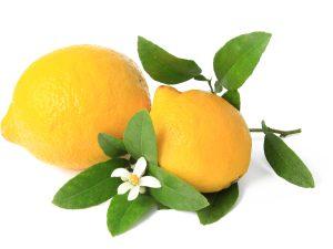 Linea Limone